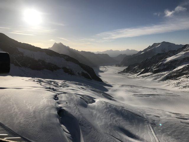 アレッチ氷河の写真