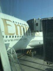 A380の写真